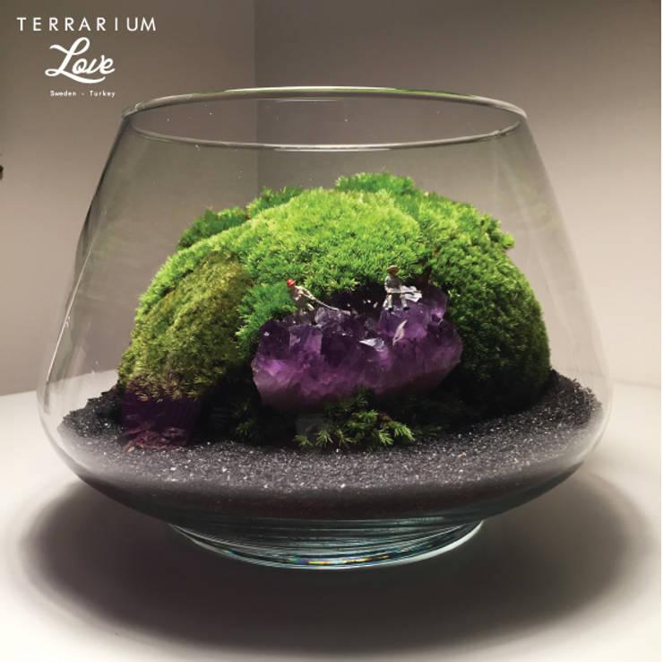 Terrarium love – Amethyst Terrarium:  tarz İç Dekorasyon