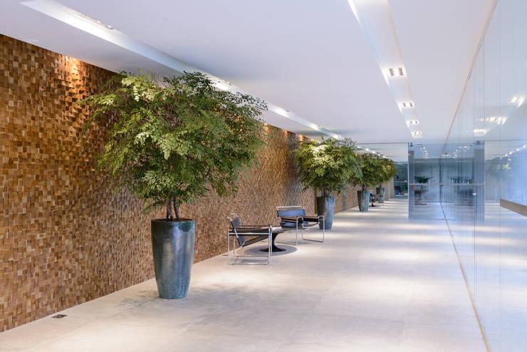 Árvores de Avencão | Hall de entrada :   por Svetlana Plantas Preservadas,Moderno