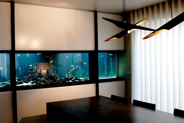 freshwater aquarium in a living room : Sala de estar  por ADn Aquarium Design
