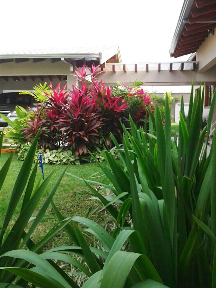 Casa N.M.: Jardins  por Eneida Lima Paisagismo,