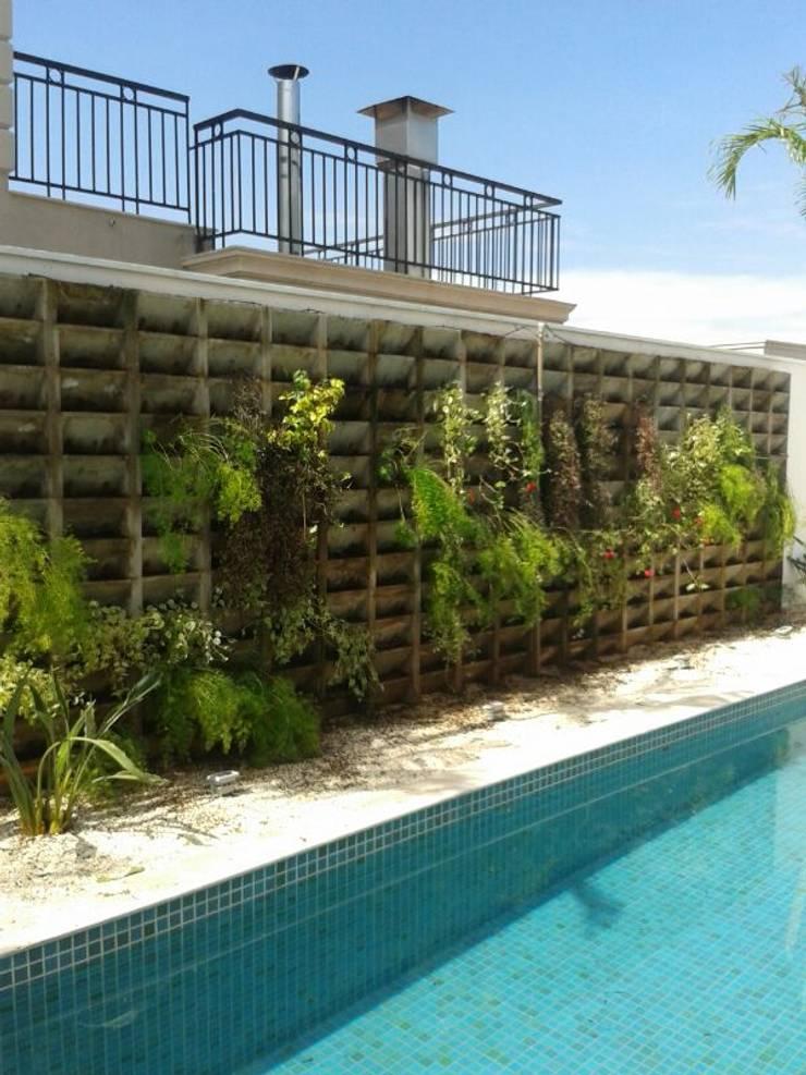 Jardin de style  par Eneida Lima Paisagismo, Tropical