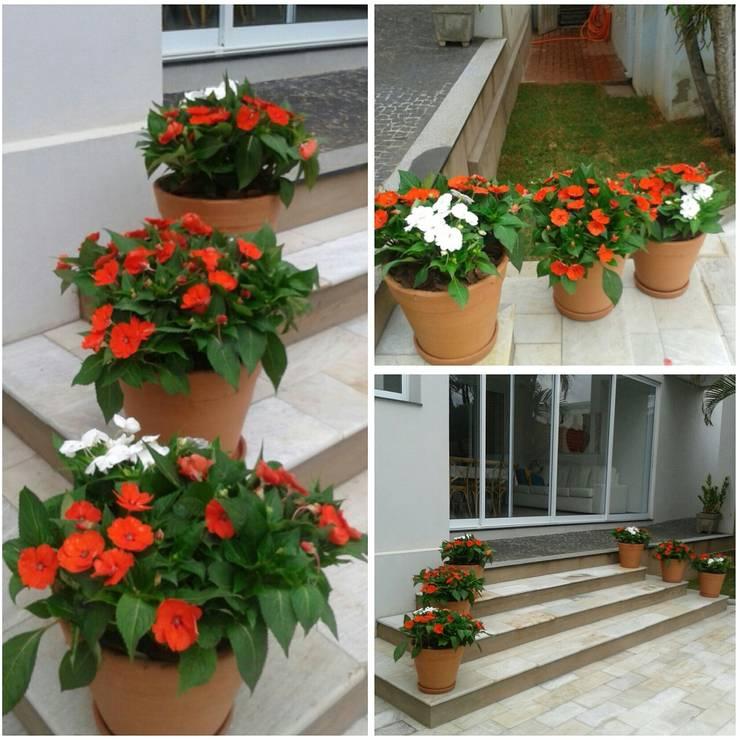Vasos: Jardim  por Eneida Lima Paisagismo,