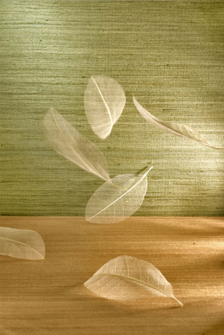 Textures:  Walls & flooring by Redskin Home Decor Pvt Ltd