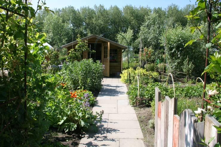Eetbare tuin:  Tuin door Carla Wilhelm, Landelijk