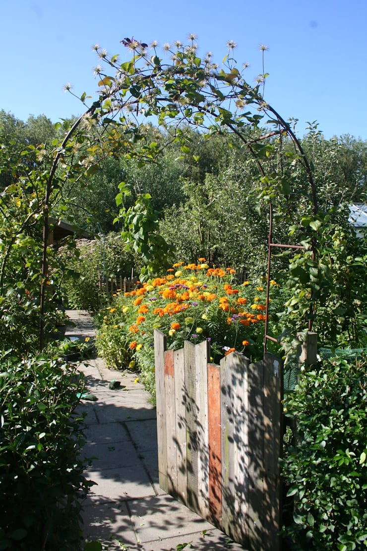 Eetbare tuin:  Tuin door Carla Wilhelm