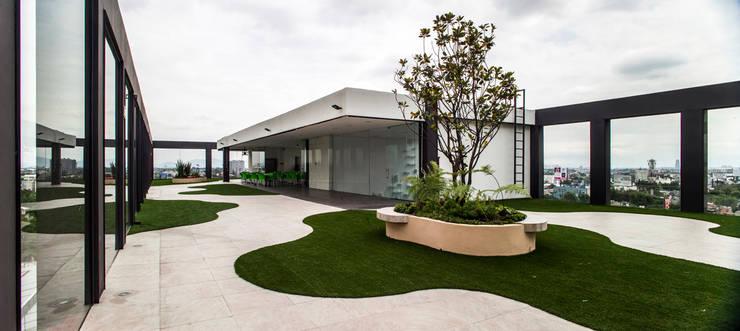 Garten von Serrano Monjaraz Arquitectos,