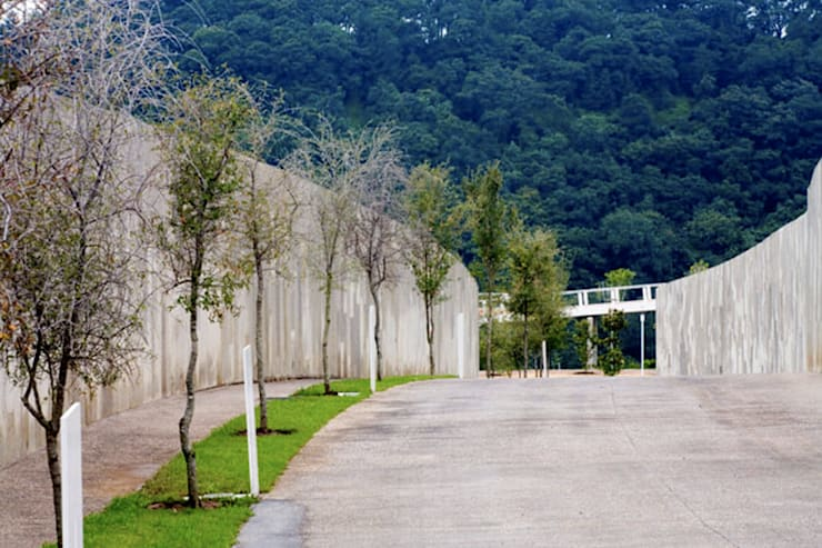 Cumbres de Santa Fé: Jardines de estilo  por Serrano Monjaraz Arquitectos