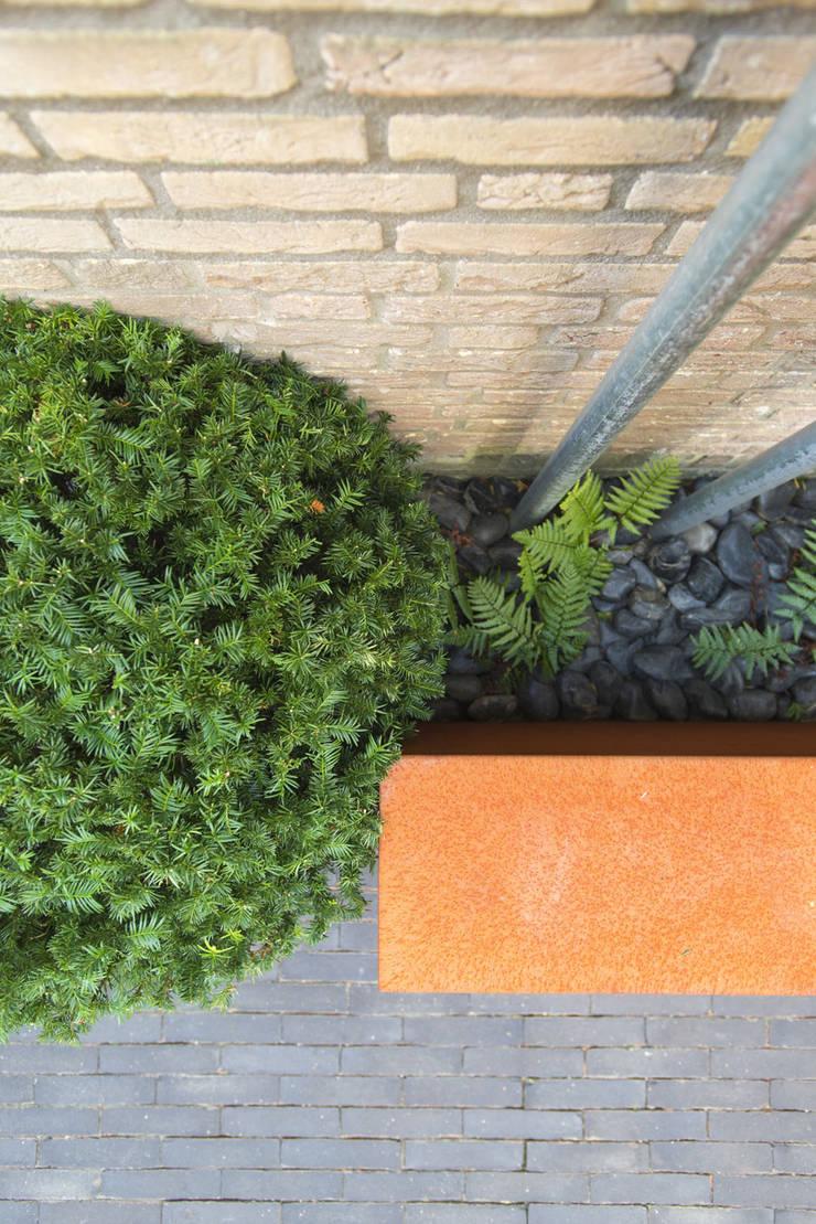 Strakke lijnen:  Tuin door De Rooy Hoveniers