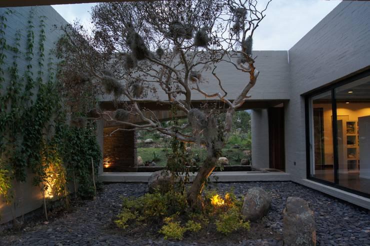 Casa IQ: Jardines de estilo  por AMR ARQUITECTOS, Moderno