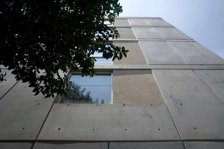 Edificio Castañeda: Ventanas de estilo  por José Vigil Arquitectos