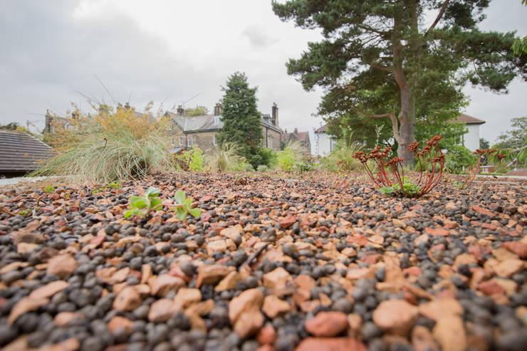 A Modern Garden with Traditional Materials:  Garden by Yorkshire Gardens