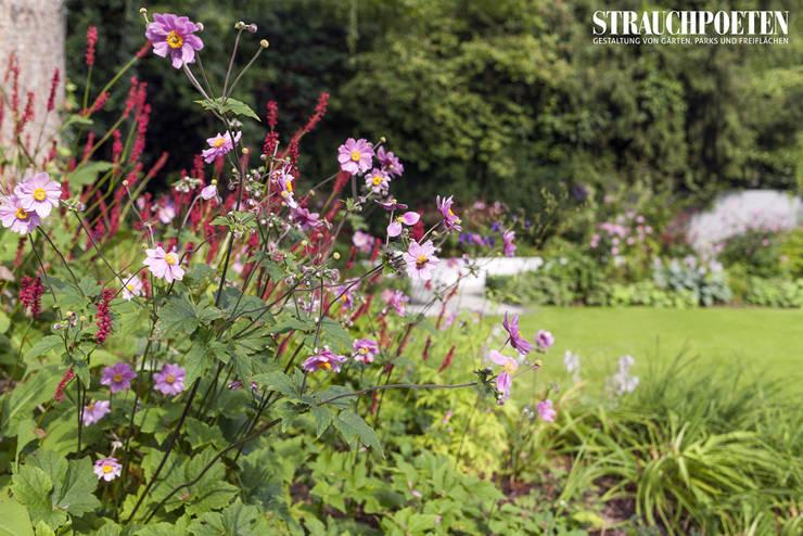 Ganzjährig blühende Staudenpflanzung:  Garten von Strauchpoeten