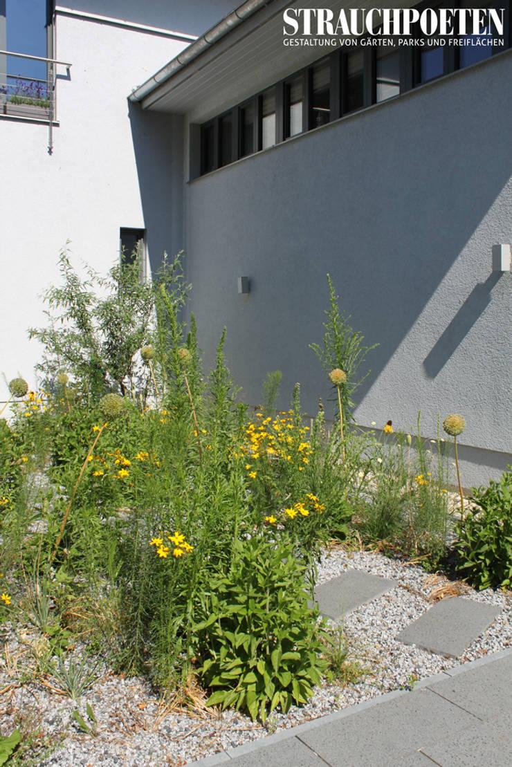 Ausgefallene Staudenpflanzung für sonnigen Vorgarten:  Garten von Strauchpoeten