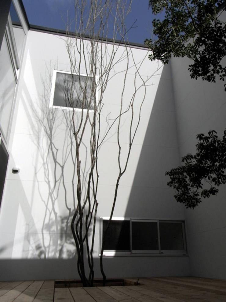 C-HOUSE: 株式会社長野聖二建築設計處が手掛けた庭です。,