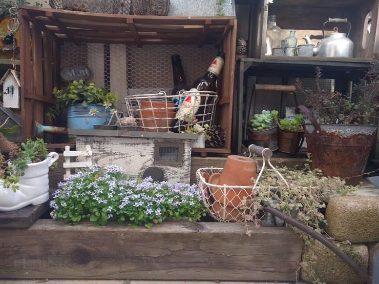 100均アイテムの家庭菜園・ガーデニング写真: kokkomachaが手掛けた庭です。