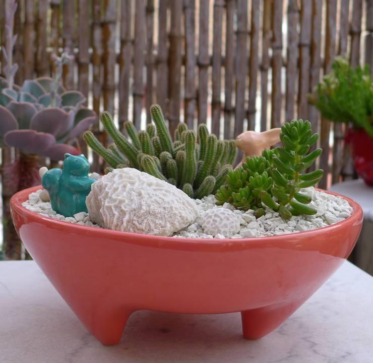 Jardines de estilo  por CURADORAS