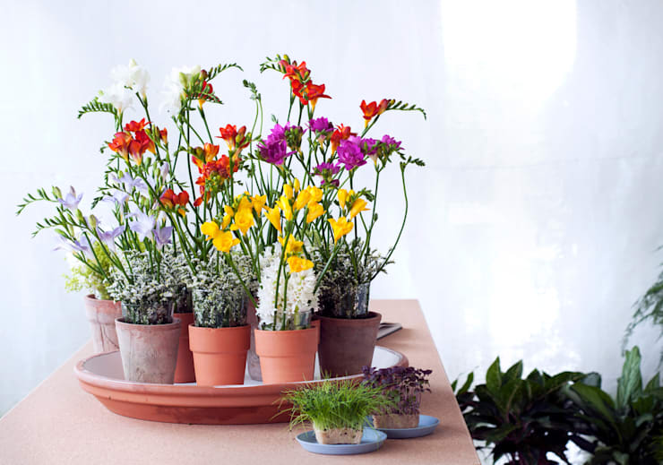 Freesien: moderne Wohnzimmer von Tollwasblumenmachen.de