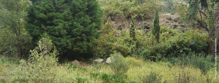 Garten von NOSOTROS TIERRA, Modern