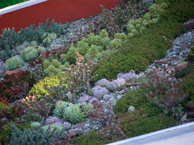 Jardines de estilo  por NOSOTROS TIERRA,