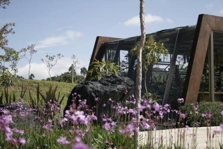 Proyectos residenciales: Jardines de estilo moderno por MU paisajistas