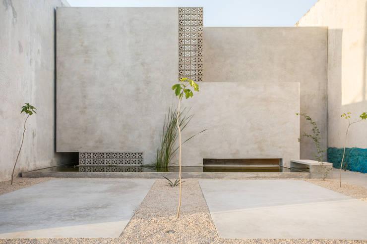 Maisons de style  par TACO Taller de Arquitectura Contextual