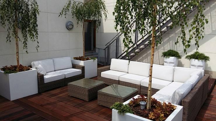 taras: styl , w kategorii Dach płaski zaprojektowany przez Ogrodowa Sceneria,Nowoczesny
