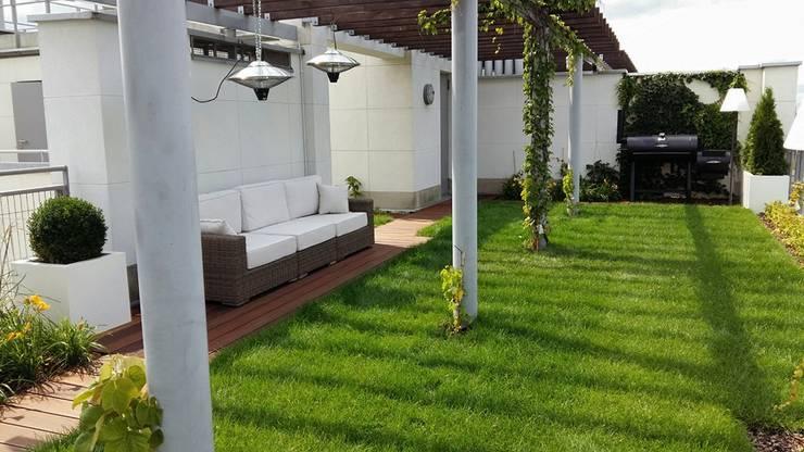 trawnik z rolki: styl , w kategorii Taras zaprojektowany przez Ogrodowa Sceneria,Nowoczesny