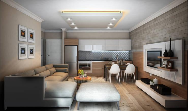 MİNERVA MİMARLIK – Salon ve açık mutfak:  tarz Oturma Odası