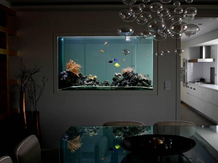 ADn saltwater aquarium: Sala de jantar  por ADn Aquarium Design