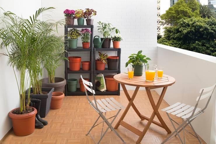 Jardín de estilo  por Idea Interior