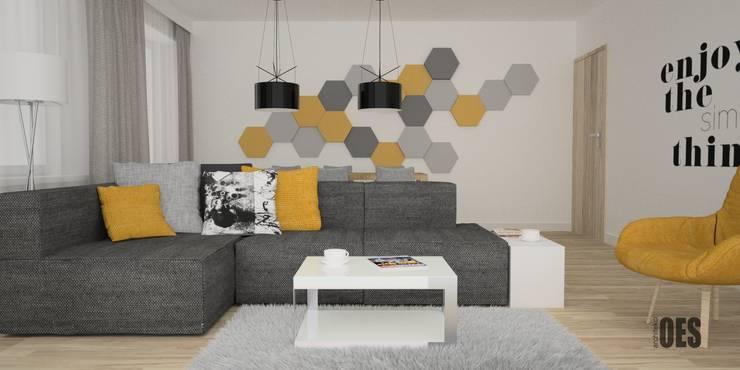 Projekt salonu i przedpokoju: styl , w kategorii Salon zaprojektowany przez OES architekci,Nowoczesny Kamień