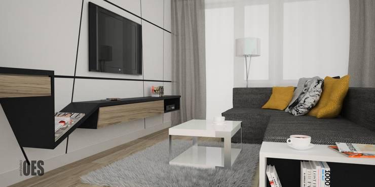 Projekt salonu i przedpokoju: styl , w kategorii Salon zaprojektowany przez OES architekci,Nowoczesny Lite drewno Wielokolorowy