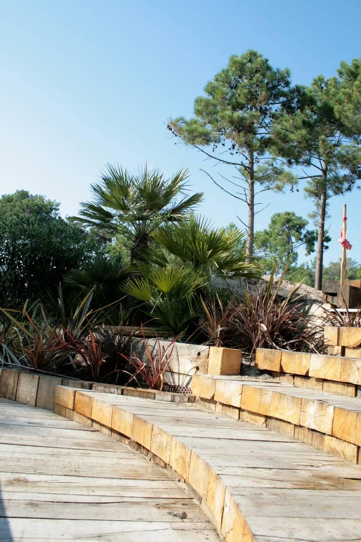 Modern style gardens by Anthemis Bureau d'Etude Paysage Modern