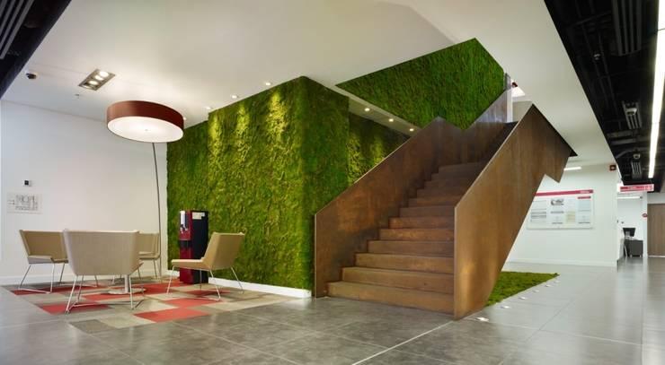 Cámara de Comercio: Oficinas y Tiendas de estilo  por Arquint Colombia