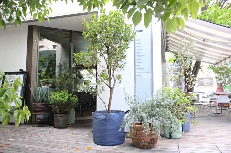by Shikinowa Design Modern