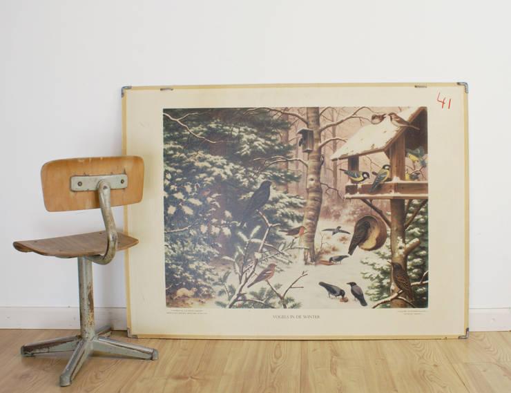Vogels in de winter/vissen: Oude dubelzijdige schoolplaat van Koekkoek. Vintage/retro poster op karton :   door Flat sheep, Rustiek & Brocante