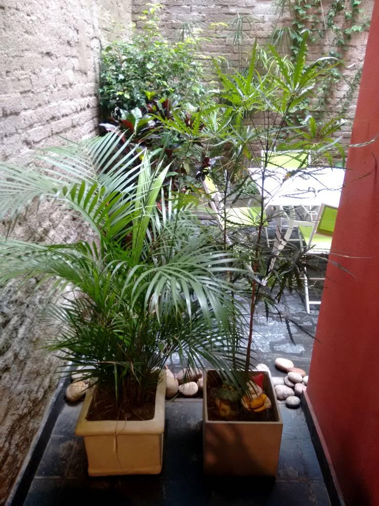 Conexión de Local a patio interno.:  de estilo  por ARQ. VANINA VOGEL