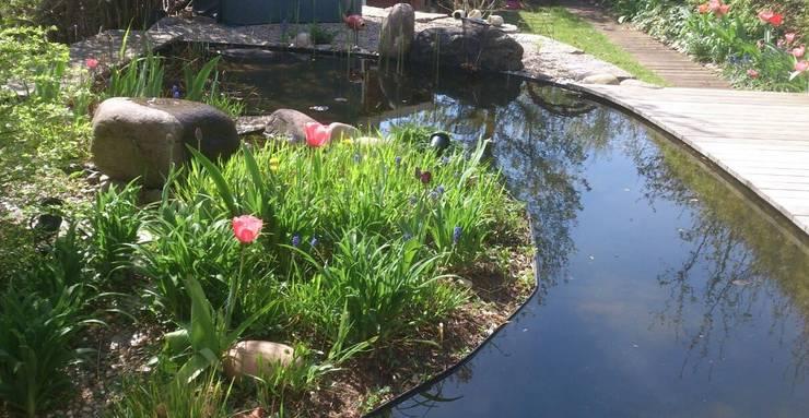 Bogenform des Wasserbeckens führt zu optischer Gartenvergrößerung:  Garten von dirlenbach - garten mit stil,