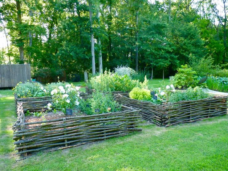 Carré de plantes aromatiques: Jardin de style  par Nature in the Garden