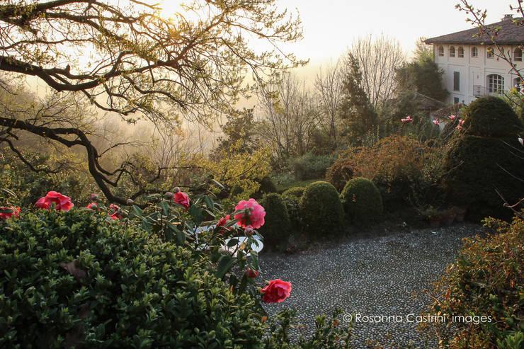 Jardines de estilo  por Rosanna Castrini Garden Photography