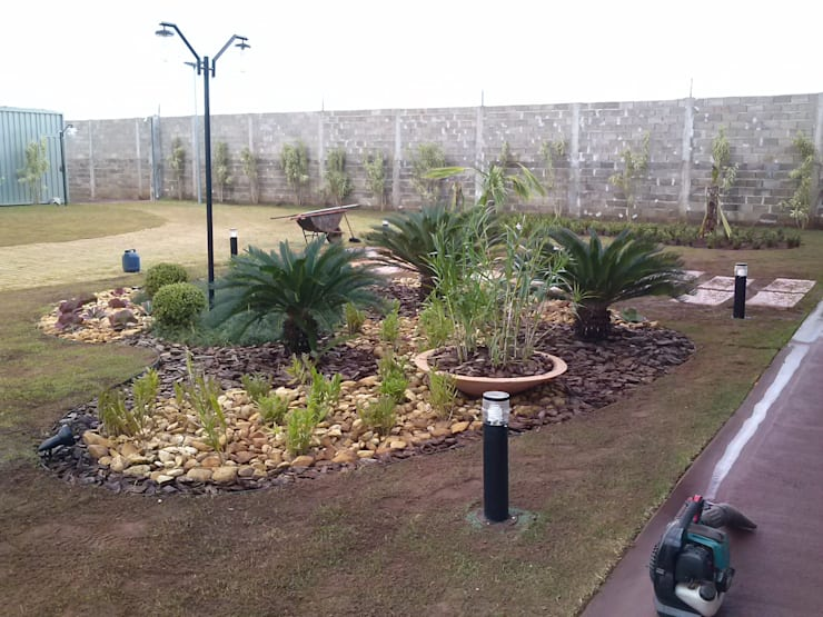 Jardines de estilo  por Borges Arquitetura & Paisagismo, Tropical