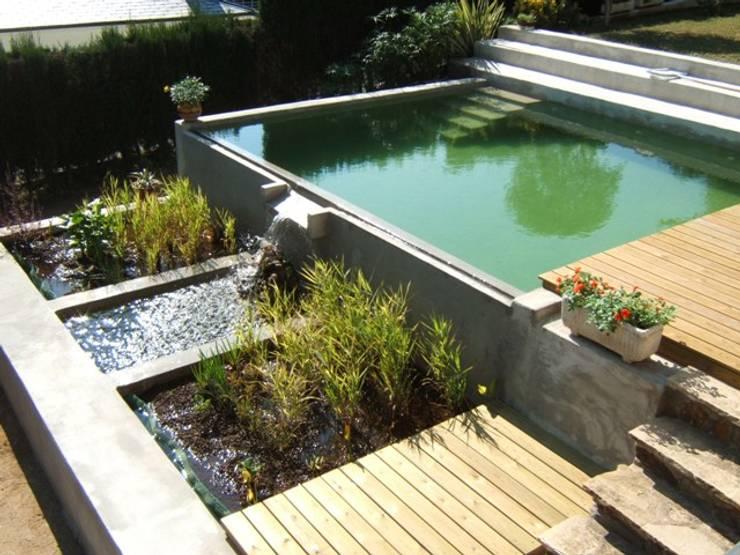Piscinas de estilo moderno por jardinista
