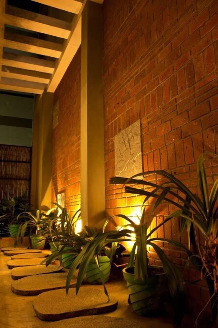 Indoor Landscape for coffee shop:  Interior landscaping by Uncut Design Lab