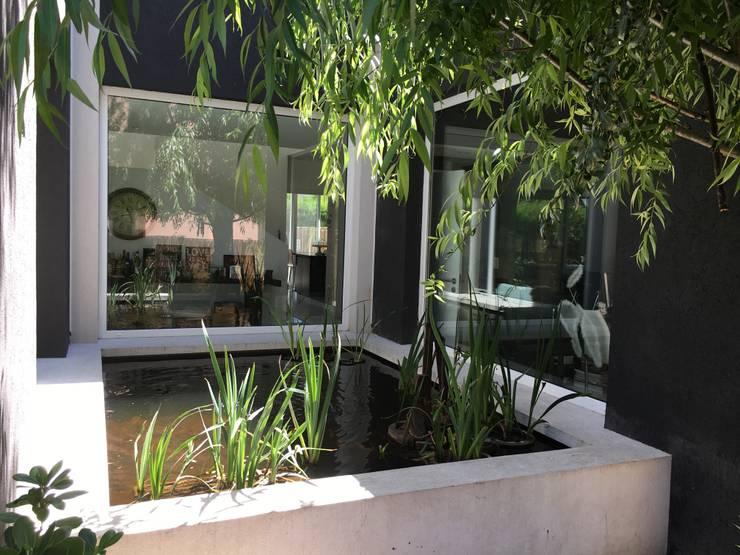 Casa FM: Jardines de estilo moderno por MFARQ - Tomas Martinez Frugoni Arq
