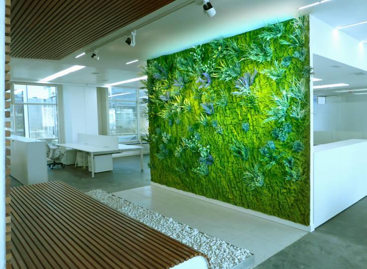 Comedores de estilo moderno por Muros Frescos