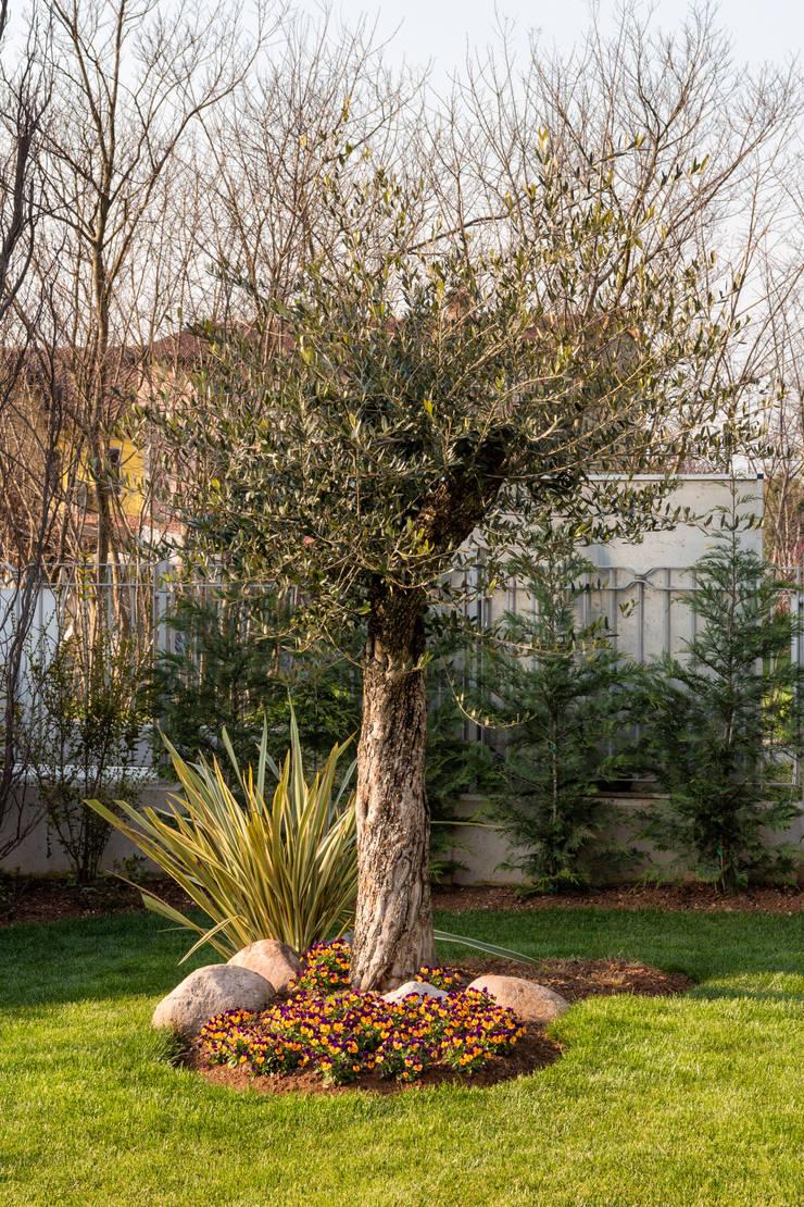 VILLE COLOMBERA: Giardino in stile  di 2P COSTRUZIONI srl,