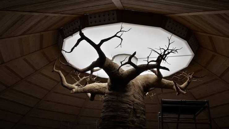 soffitto teso su baobab: Spazi commerciali in stile  di artesa srl