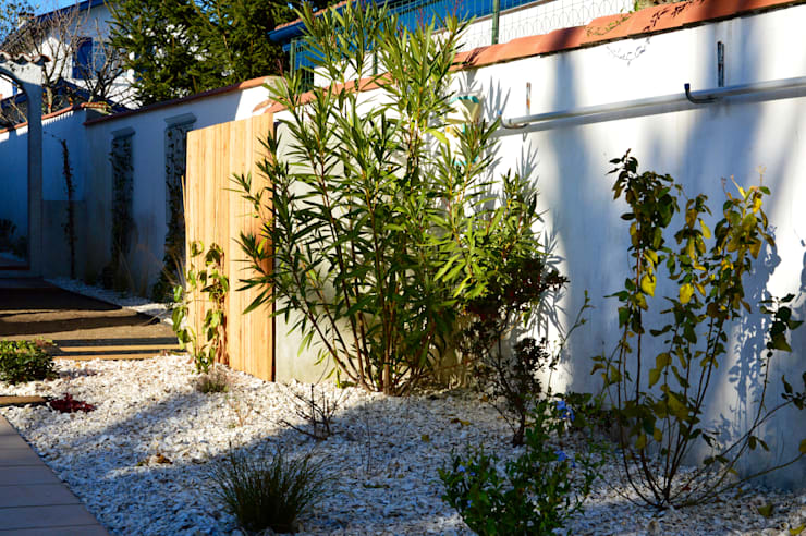 Garden by PATXI CASTRO, Eclectic