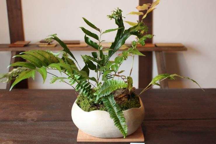 空-ku- とリトルフォレスト: 陶刻家 由上恒美                                          Ceramic Sculptor  tsunemi yukami  が手掛けたインテリアランドスケープです。