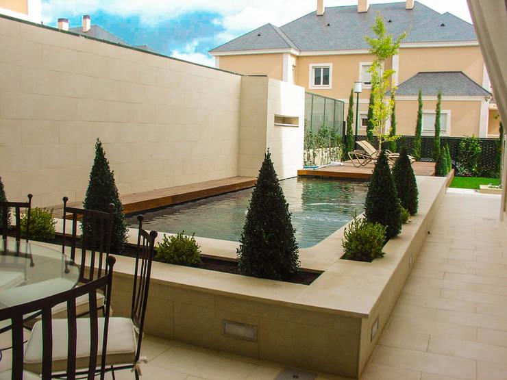 modern Garden by avidra